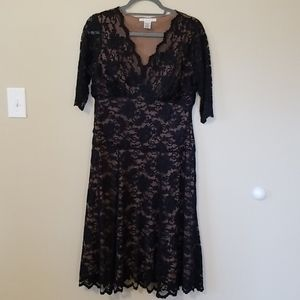 CAbi #714 Black Lace Overlay V-Neck Dress L